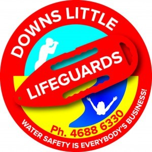 Downs Little Lifeguards beach experience day